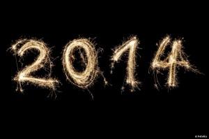 Bonne année 2014 sur Maman Alitée
